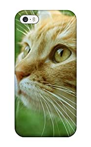 High Quality Shock Absorbing Case For Iphone 5/5s-ginger Cat