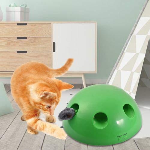 Divertido Juego del Gatito Gato Juguete Divertido Mascota ...