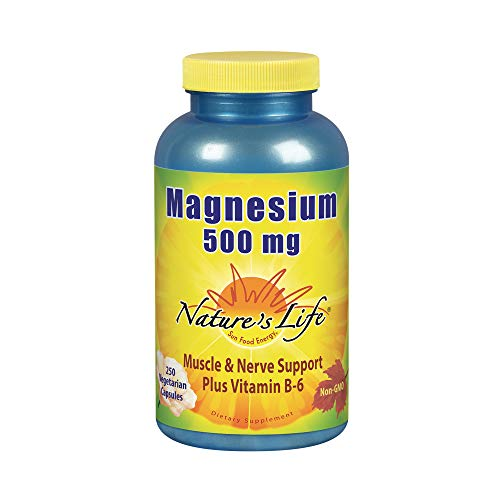 Nature's Life Magnesium Capsules, 500mg | High Potency Magnesium Supplement Plus Vitamin B-6 for Muscles & Nerves Support | 250 Count ()