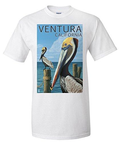 Ventura  California   Brown Pelican  White T Shirt Xx Large