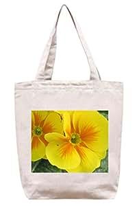 Amarillo de Reino Unido - algodón bolsa para herramientas de lona