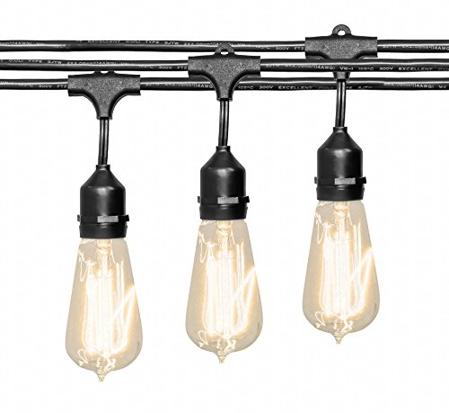 Outdoor String Lights Heavy Duty: Deneve Outdoor String Lights (48ft) With Edison Bulbs