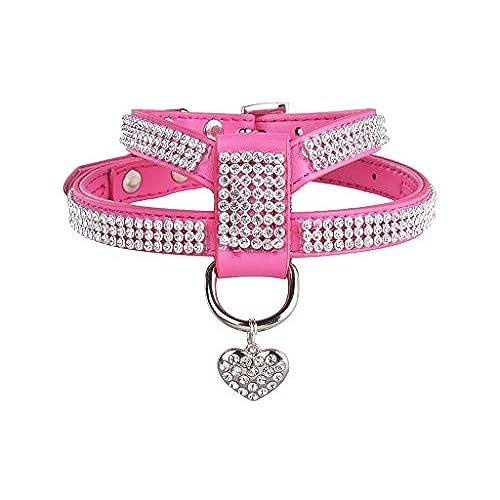 Fancy Dog Harness: Amazon.com