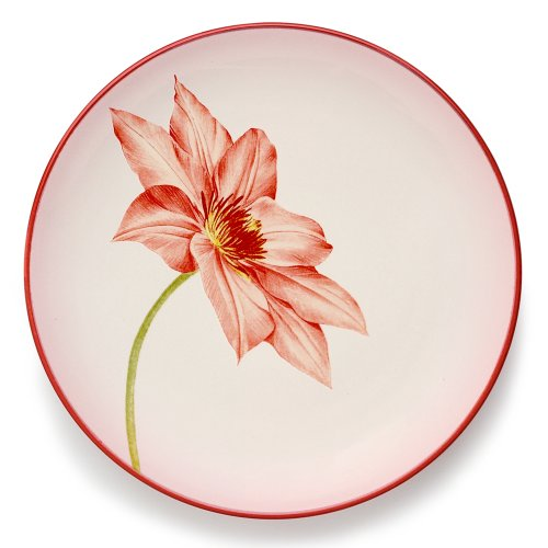 (Noritake Colorwave Raspberry Accent Plate,)