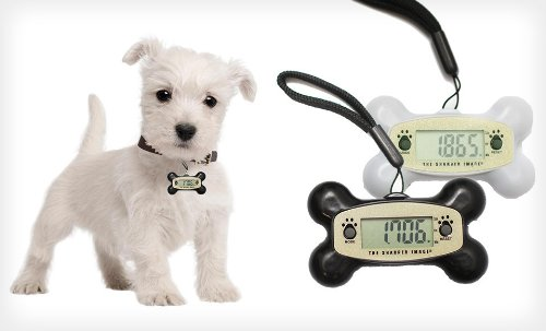 the-sharper-image-pet-o-meter-silver