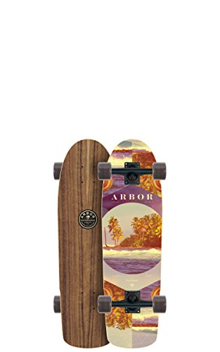 Arbor Pilsner Photo Complete Skateboard, Nocturnal, 28.75