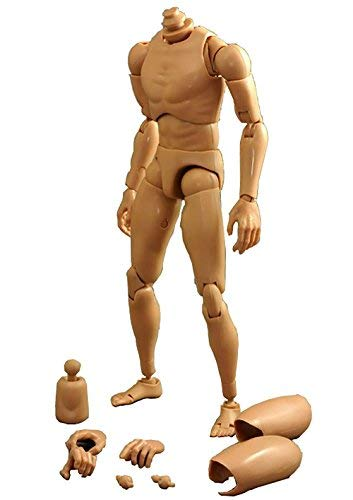 0268c86e405 Image Unavailable. Image not available for. Color: ZYAQ 1/6 Scale Wide Shoulder  Action Figure Male Muscular Body Toys ...