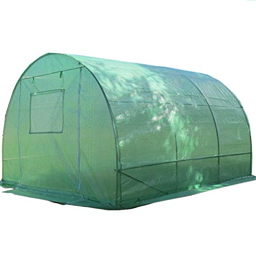 High Canopy Clear Peak (DELTA Canopies Greenhouse 10'x10' (B2) 54 lbs - Green House Walk in Hot House By)