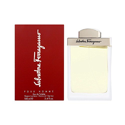 Salvatore Ferragamo By Salvatore Ferragamo For Men. Eau De Toilette Spray 3.4 Ounces, 3.4 fl. oz.