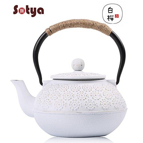 Cast Iron Teapot,Japanese Tea Kettle Sotya Tetsubin teapot w