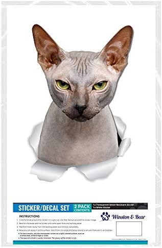 Winston & Bear Grumpy Sphynx Cat Wall Decals - 2 Pack - Sphynx Cat Toilet Sticker - 3D Cat Car Window and Bumper Sticker - Retail Packaged Sphynx Cat Gifts 25