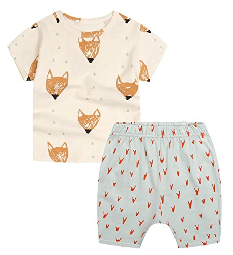 Unisex Baby Little Girls Boys' Toddler 2pc Summer T-shirt Shorts Set Outfits (2-3 Years, Fox) by Favorland