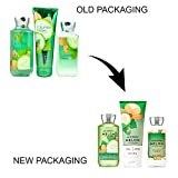 Bath & Body Works Signature Collection Cucumber