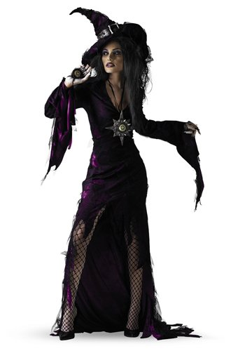Disguise Adult Sorceress, Purple, Large (12-14) Costume]()