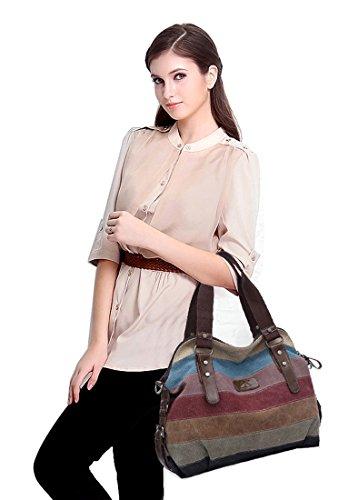 FreeMaster Women's Canvas Multi-Color Hobos Shoulder Bag ...