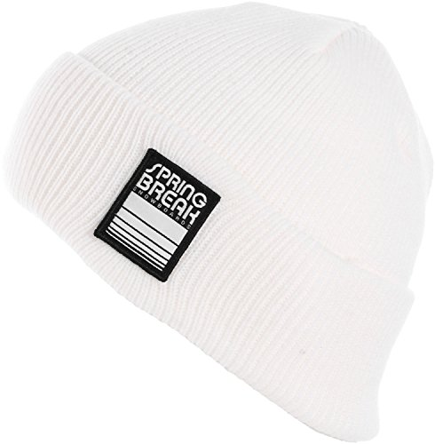 Capita Spring Break Beanie, White (Capita Hat)
