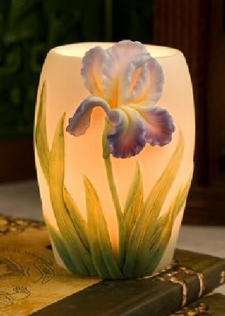 Superb Bearded Iris Night Lamp Ibis U0026 Orchid Design