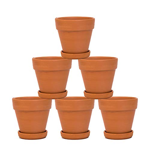 YXMYH Terra Cotta Pots with Saucer- 6-Pack Large Terracotta Pots Clay Pots 4'' Clay Ceramic Pottery Planter Cactus Flower Pots Succulent Pot Drainage Hole- Great for Plants,Crafts(4 inches)