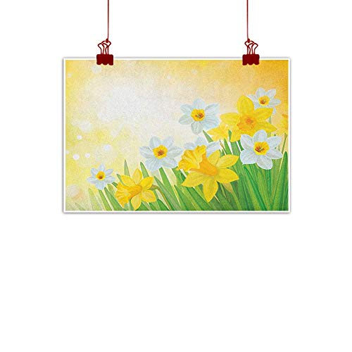 Decorative Music Urban Graffiti Art Print Daffodil,Daffodils Garden Narcissus Rebirth and New Beginnings Celebration Graphic, Green Yellow White 48