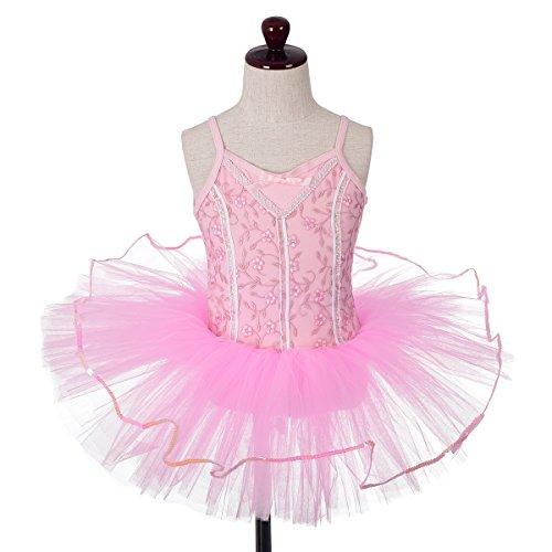 Dressy Daisy Girls' Embroideries Sequins Ballet Tutu Dancewear Fairy Costume Leotard Size 4-5 (Daisy Ballet Tutu)