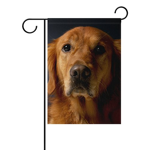 (Mohado Golden Retriever Dog Garden Flag Yard Decoration 28 x 40 Inches Double Sided House Flag Banners Outdoor Lawn Decorations)