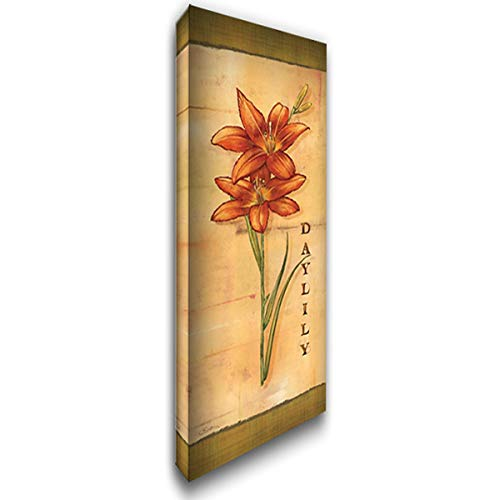 Les LYS I 19x40 Gallery Wrapped Stretched Canvas Art by Audrey, Charlene