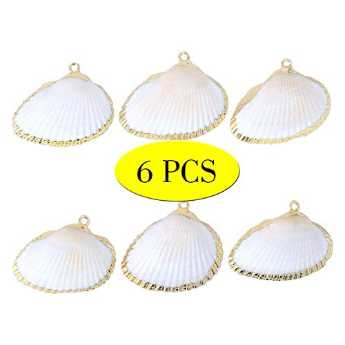 Wholesale 6 PCS Real Ocean Sea Shells Pendant 14K Real Gold Plated Conch Scallop Seashells Charms Bulk for Jewelry Making