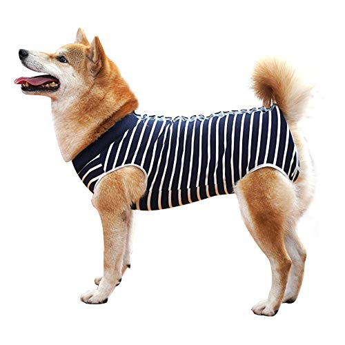 Dog Recovery Suit Abdominal Wound Protector Puppy Medical Surgical Clothes Post-Operative Vest Pet After Surgery Wear Substitute E-Collar & Cone (XL, Blue Stripe) (Body Suit For Dogs)