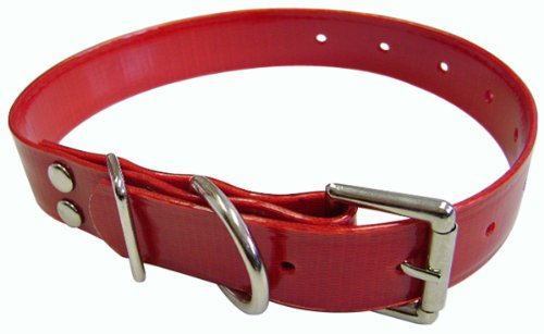 (Hamilton 1-Inch by 22-Inch Plastic Coated Nylon Webbing Dog Collar, Red)
