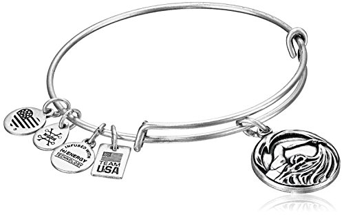 Alex and Ani Team USA Swimming Expandable Rafaelian Silver Bangle Bracelet