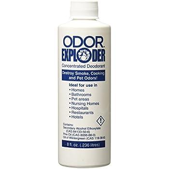 Amazon Com Host Odor Exploder Carpet Cleaner Home Amp Kitchen