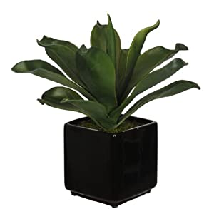 House of Silk Flowers Artificial Agave Succulent in Cube Ceramic 47