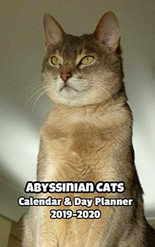 Abyssinian Cats Calendar & Day Planner 2019-2020 for sale  Delivered anywhere in Canada