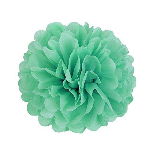 SUNBEAUTY 20cm 5pcs Mint Green Tissue Paper Pom Poms Flower Balls Hanging Decoration Party Birthday Wedding