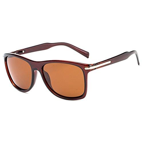 C Polarizadas 400 UV Gafas Mujer para para De Aviator Hombre Sol A Protección 6qqwxfPT
