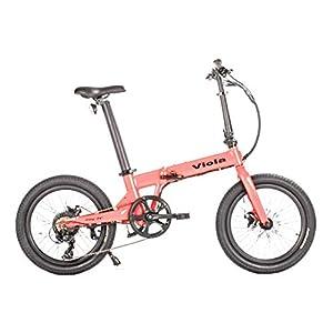 Viola bike Bicicletta Elettrica Pieghevole, 250W 25km/h, EBike da 20 Pollici Ruota Bici Elettrica Motore Brushless con…