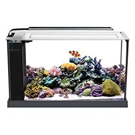 Fluval 10528A1 Evo V Marine Aquarium Kit, 5 gal, Black