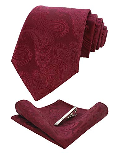 JEMYGINS Burgundy Paisley Silk Tie and Pocket Square, Necktie with Tie Clip Sets for Men(1) ()