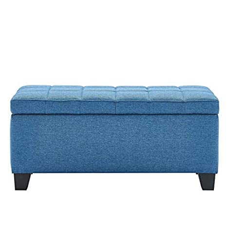Awesome Amazon Com Clara Modern Fabric Storage Ottoman In Blue Ncnpc Chair Design For Home Ncnpcorg