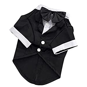 "Kuoser Dog Shirt Puppy Pet Small Dog Clothes, Stylish Suit Bow Tie Costume, Wedding Shirt Formal Tuxedo with Black Tie, Dog Prince Wedding Bow Tie Suit (M(Back: 11"",Chest: 15"",Neck:10""), Black)"