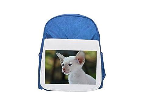 Mochila de gato siamés, gato, gato, bebé, pelo estampado azul mochila de