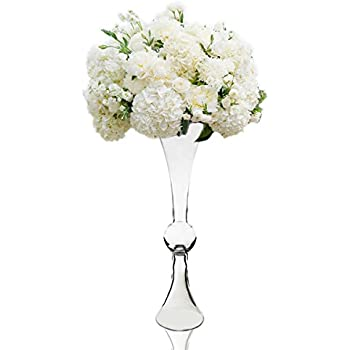 Amazon Cys Gtr134 Trumpet Pilsner Vase 20 Pack Of 6 Home