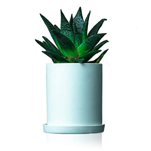 One Simplicity 4.3 Inch Modern Flower Pot with Saucer, Decorative, Nordic Garden Cup Ceramic Clay Planter   Smooth, Elegant Form   Home, Patio, Indoor Use for Small Plants (001)