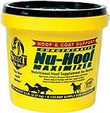 RICHDEL 784299390508 Nu-Hoof Maximizer Hoof & Coat Support for Horses, 5 lb