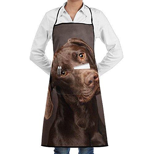 (Kitchen Bib Apron Adjustable Ties Center Pocket Doberman Pinscher Dog Curious Thinking Waterproof For Mens Womens Chef)