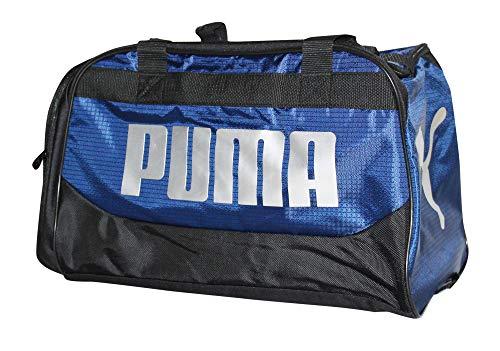 Puma Transformation