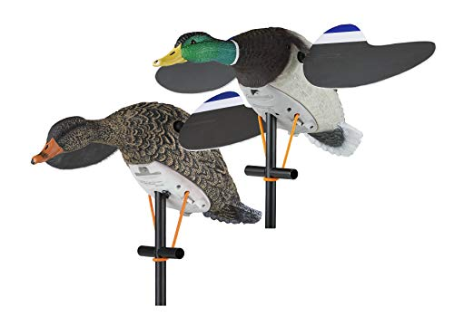 Decoy Goose Duck - Lucky Duck Lucky Pair II