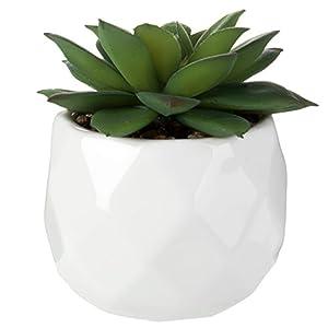 MyGift Assorted Realistic Succulent Plants in Modern Geometric Ceramic Pots, Set of 4 4