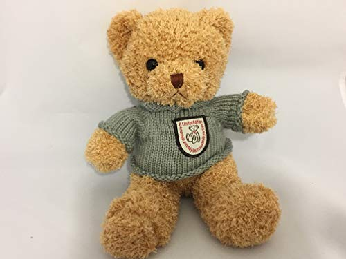 - Plush Teddy Bear with Personalized Recorded Message. Size: 12