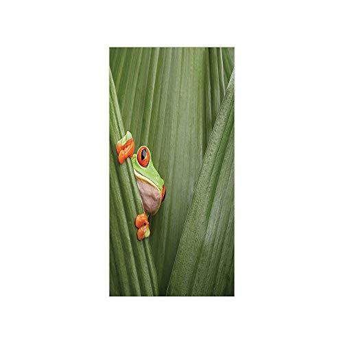 leaf frog fridge - 1